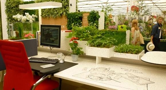 仕事場に植物を置くだけで集中力が高まり、仕事効率がアップすることが判明(米・ノルウェー研究)