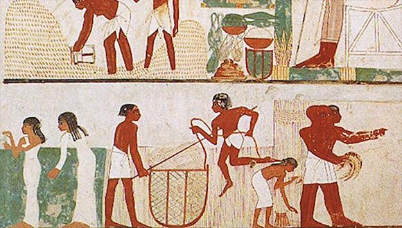 先史時代(新石器時代)の女性は異様に腕力が強かった。骨の研究で判明(英研究)