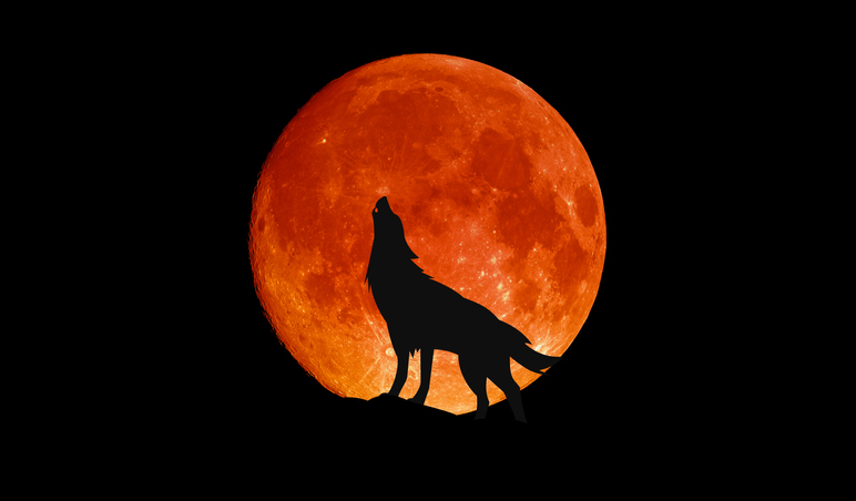 今年一番大きな満月!5月26日はスーパームーンで皆既月食