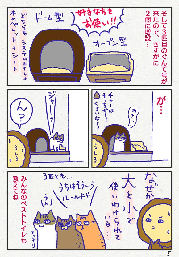 ib3005