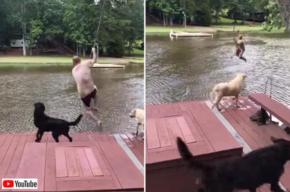 「水は危険!助けなきゃ!」ロープ遊びで池に落ちた飼い主を助けようと、咄嗟に池に飛び込んだ2匹の犬