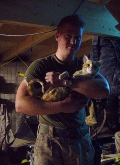 kittens_found_by_us_marines_in_afghanistan_17