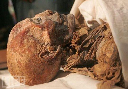 amazing_mummies_15