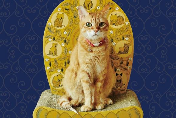 猫は我が家のご本尊。座るだけで猫に後光がさす「光背つめとぎ」が予約販売中