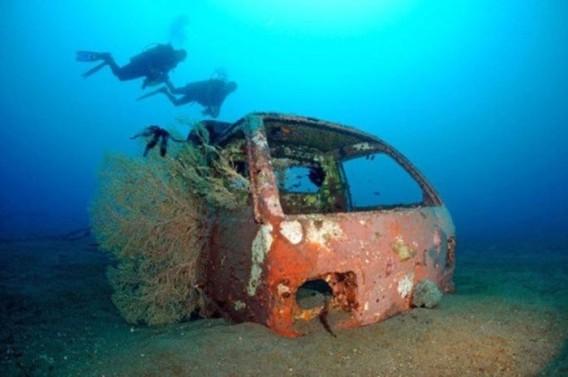 cars_reef_30_e