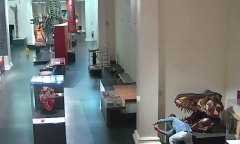 博物館侵入男
