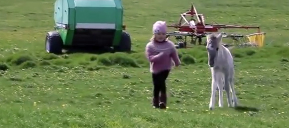 愛のある場所がわからなくなってしまった時に見る動画「少女とポニー」