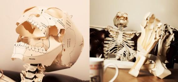 お手軽に骸骨彼氏との暮らしを楽しめる。等身大骨格標本ペーパークラフト