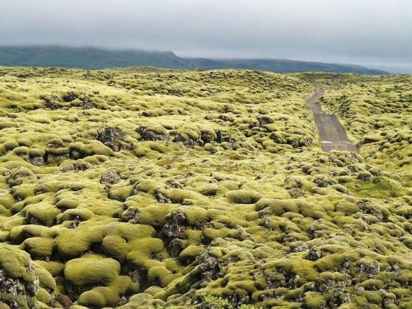 地球内異世界探訪。苔むした溶岩があたり一面に広がる「エルドフロインの溶岩原」(アイスランド)