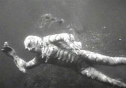 存在しないことが確認された10のUMA、未確認生物