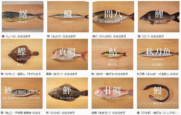 あらゆる魚、さばきます!サバやアジからスッポン、貝まで。魚のさばき方が網羅された「日本さばけるプロジェクト」