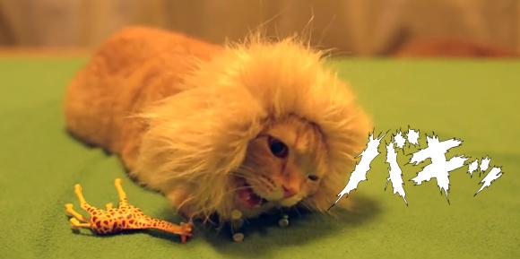 猫ライオンがキリンや象を頭からカパッ!その決定的瞬間をとらえた捕食映像