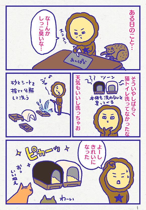 ib3601