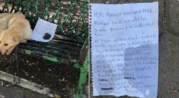 少年が親にいじめられている犬を手紙と共に公園のベンチへ