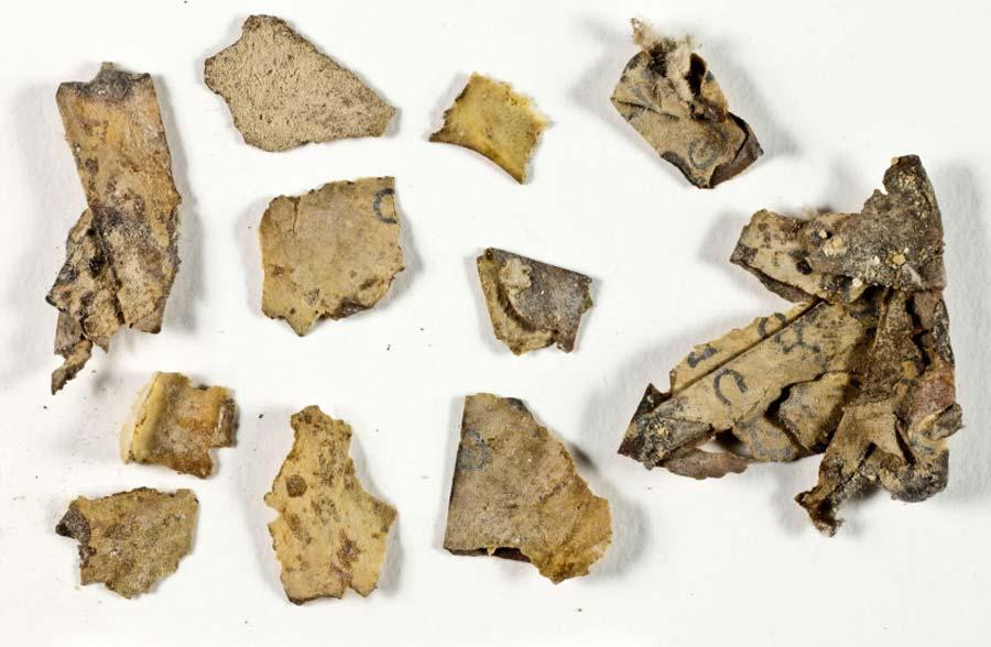死海文書の断片がイスラエルの恐怖の洞窟内で発見される