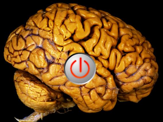 brain-off