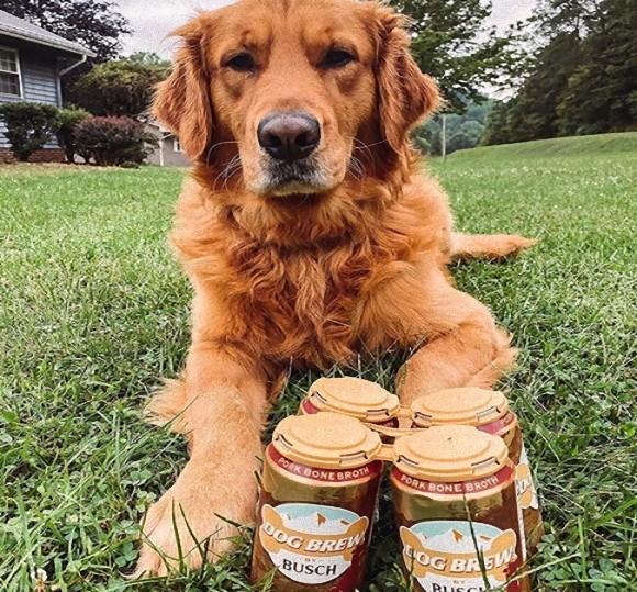 犬用ビール缶