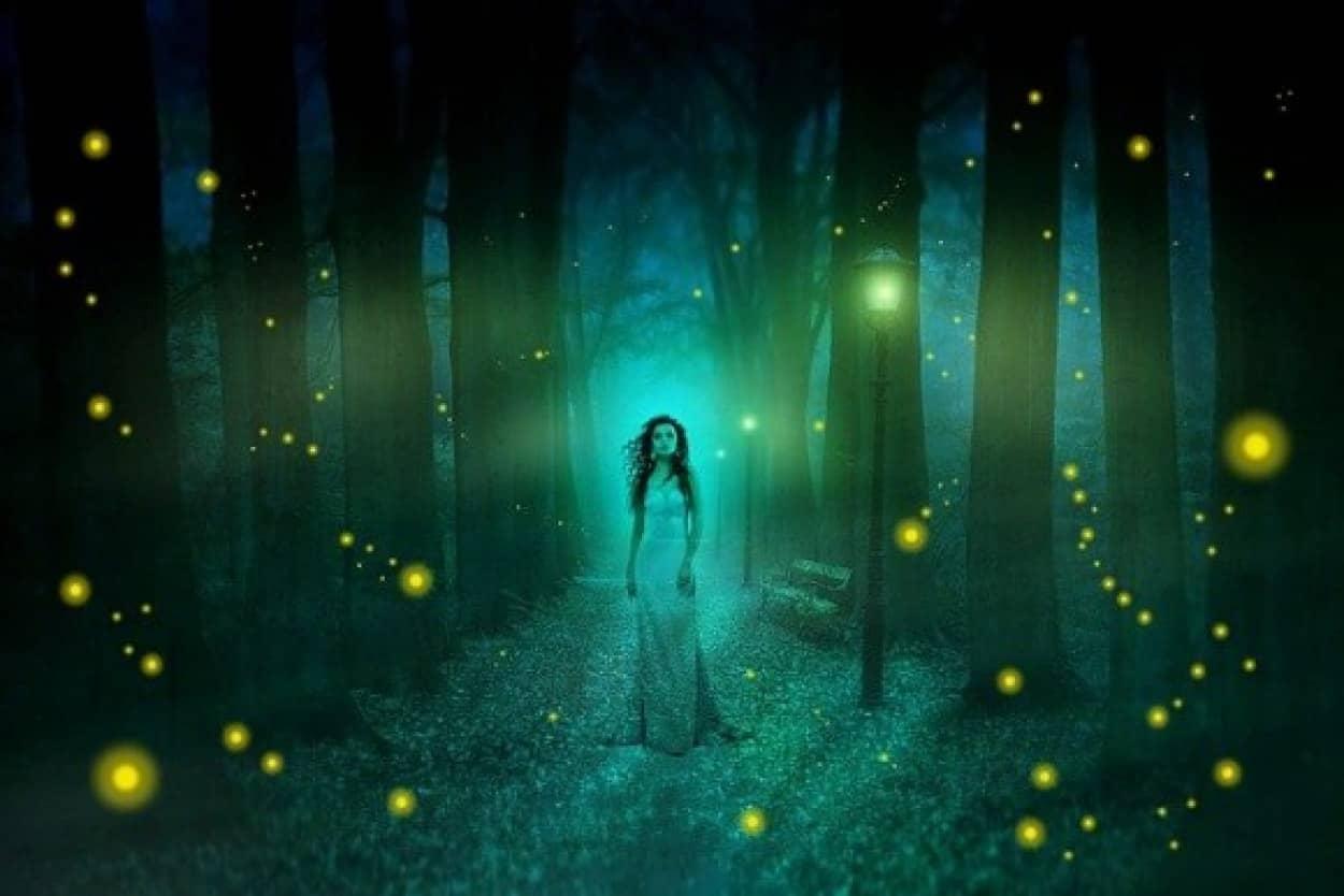 少年が見た幽霊は、昨年行方不明となった女性なのか?