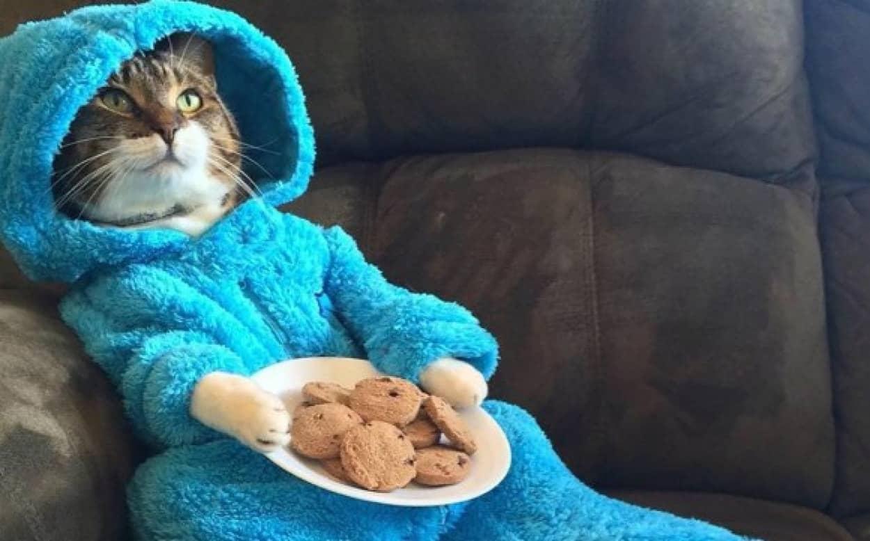 cookies1_e