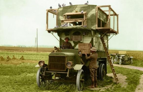 第一次世界大戦中に活躍したイギリスの軍鳩は二階建てのダブルデッカーバスを拠点としていた