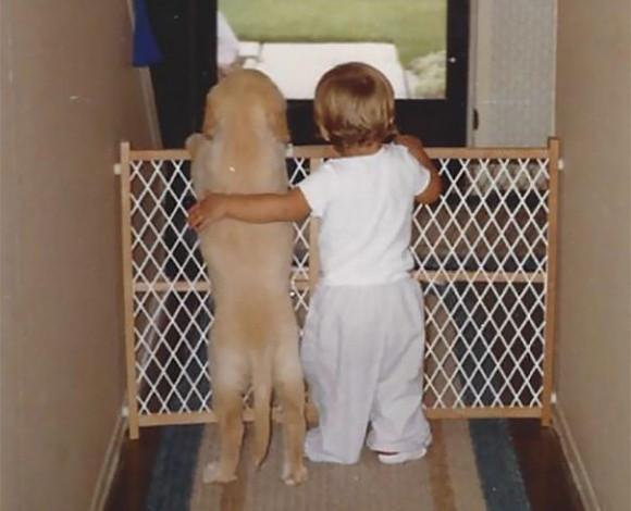 犬が子どもたちにとってかけがえのない存在である理由。