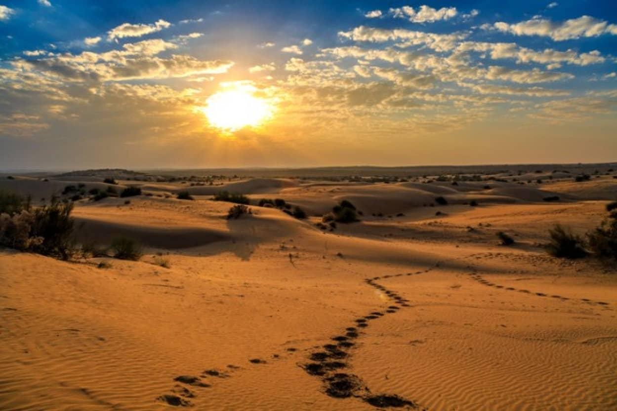 インド、タール砂漠で史上最大の地上絵が発見される