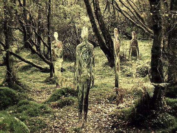 siluetas_bosque_rob_mulholland_05