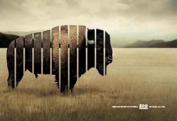zoo_1500