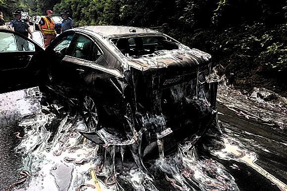 これはXファイル案件ですか?高速道路がスライムのような粘液とうごめく物体に覆われた。その正体は?(アメリカ)