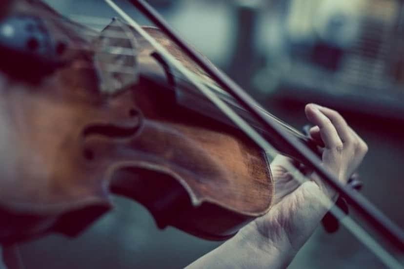 violin-374096_640_e