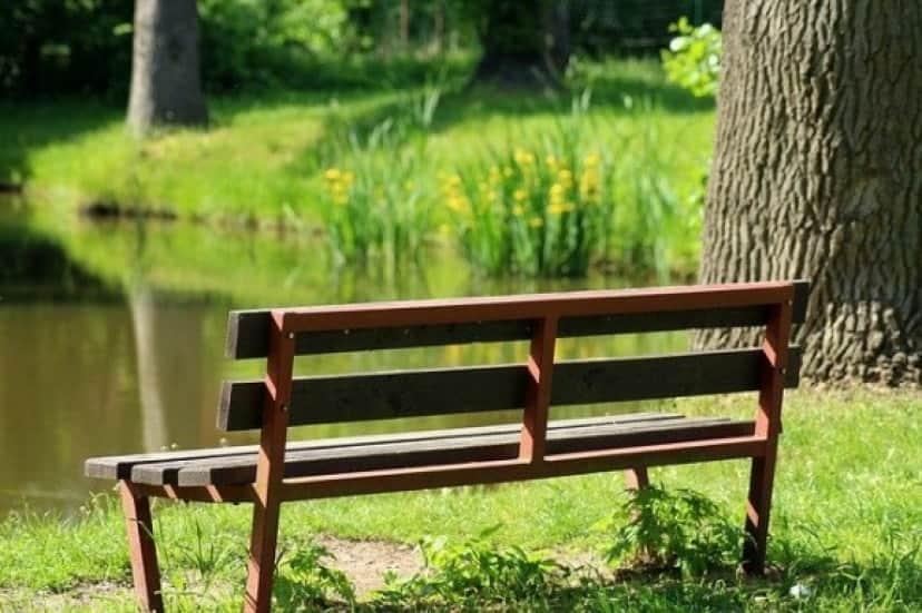 bench-3418075_640_e