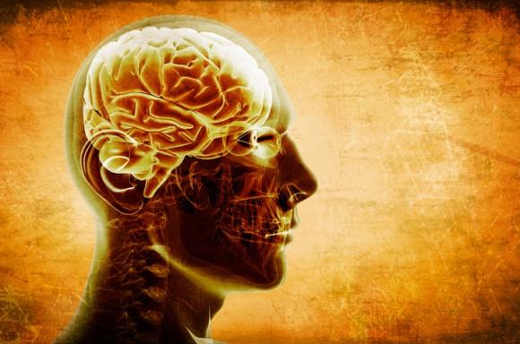 脳内を駆け巡る思考の追跡に成功(米研究)