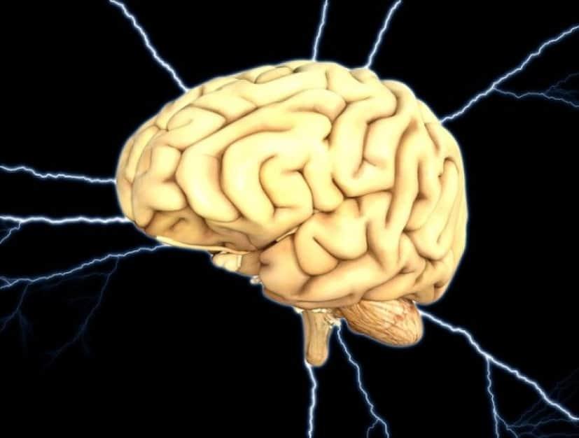 brain-1845940_640_e