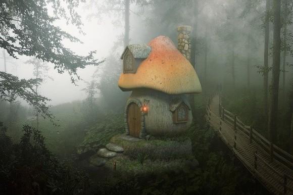mushroom-3800390_640_e
