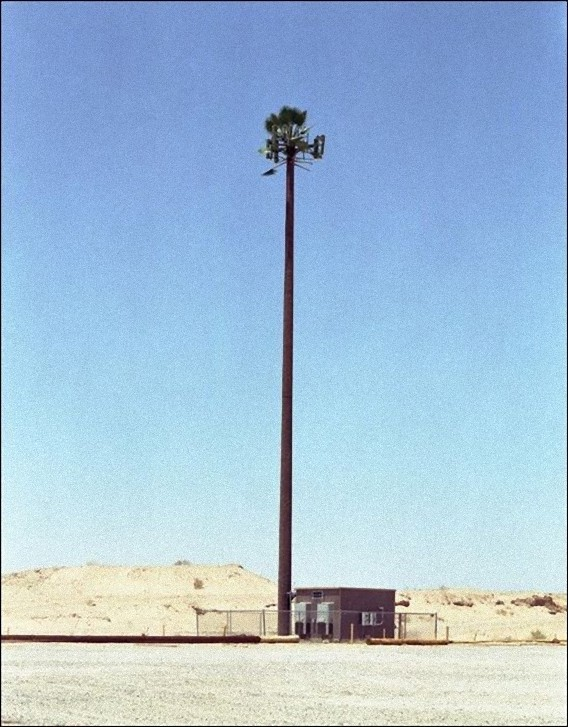 camouflaged_cell_phone_tower_12_e