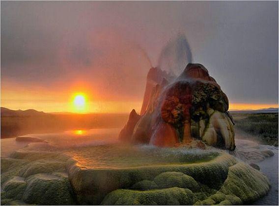 fly geyser 5