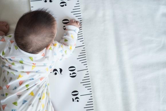 背の高さを決める遺伝子の配列が特定される