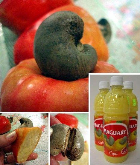 amazing_fruits_1x