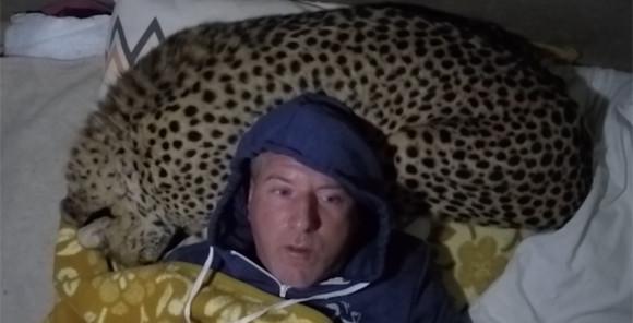 チータを枕代わりに寝る男性。それにはこんな事情があった。