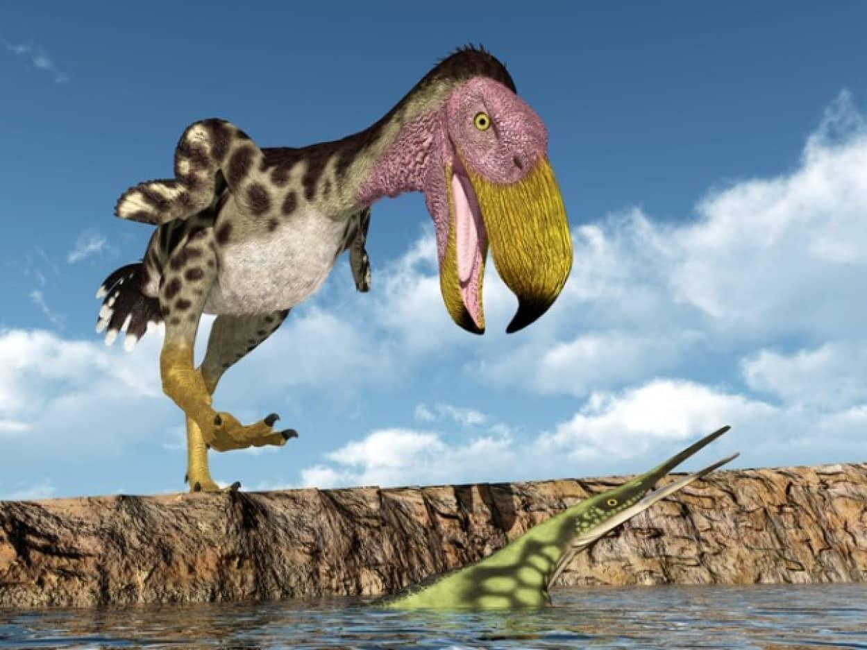 かつて実在した怪鳥たち