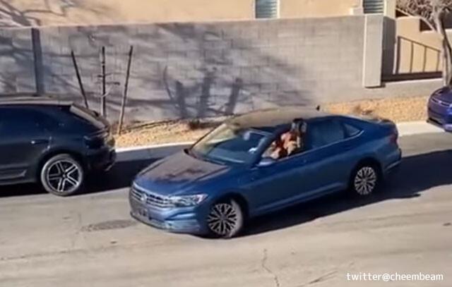 女性ドライバーによる縦列駐車、衝撃の結末が待っていた!