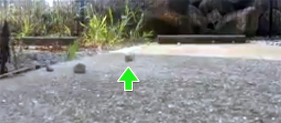 どうなってるの?宙に浮く石(長崎県)