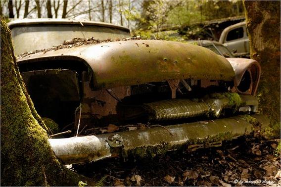 cars_20