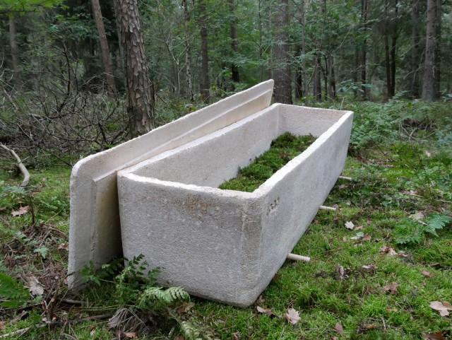 キノコから作られた「生きたお棺」で自然に還る埋葬法