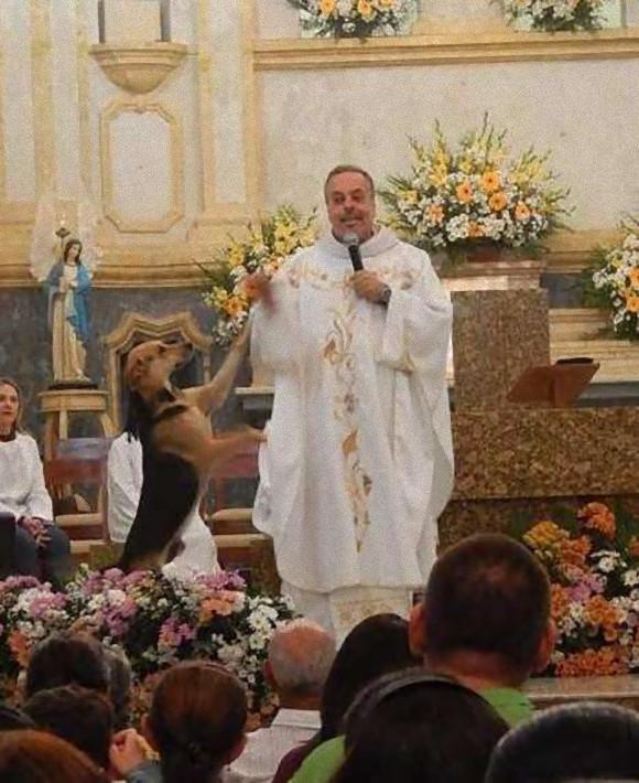 野良犬を救うため教会のミサに参加させる神父。外には餌置き場も(ブラジル)