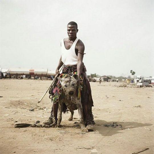 african_wild_pets_06