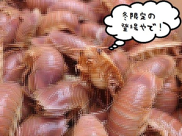 gusoku0_e