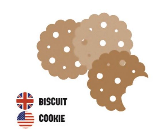 biscuit-cookie_e