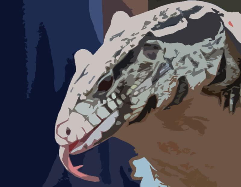 新型コロナ・殺人バチ・巨大トカゲ(今ココ) 更なる脅威がアメリカを襲う(※トカゲ出演中)