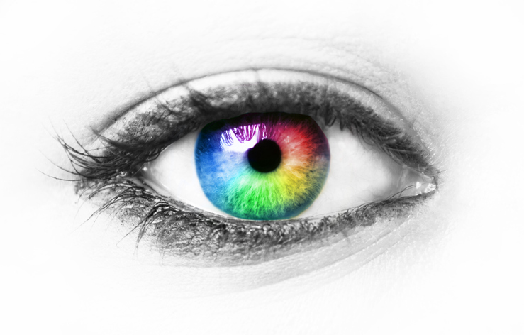 人間の目では見えない色